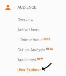 google analytics user explorer report