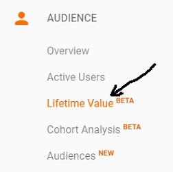 Measuring Customer Lifetime Value in Google Analytics