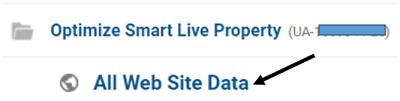 all website data view