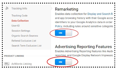enable remarketing and advertising reporting features