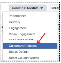 facebook sales conversion data customize columns