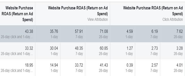 facebook sales conversion data website purchase roas