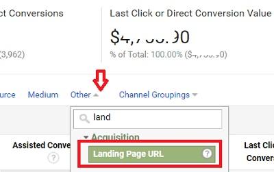 landing page url dimension