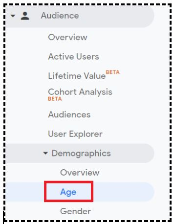 Navigate to the 'Demographics: Age' report