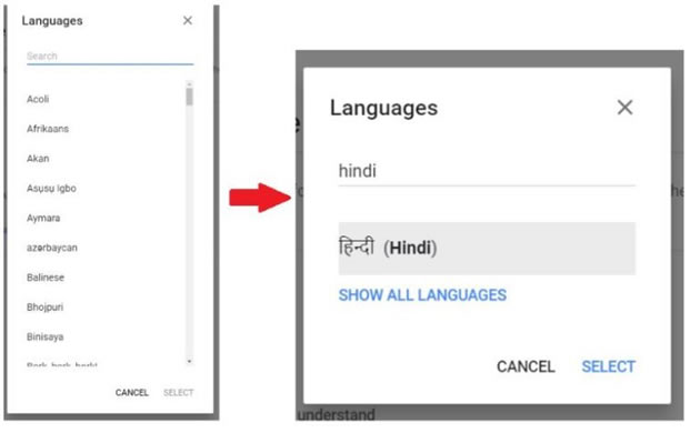 change language select