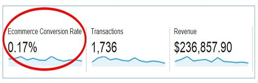 Ecommerce Conversion Rate google analytics