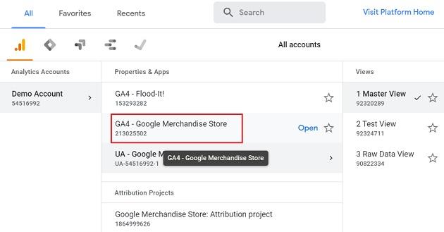GA4 Google Merchandise Store
