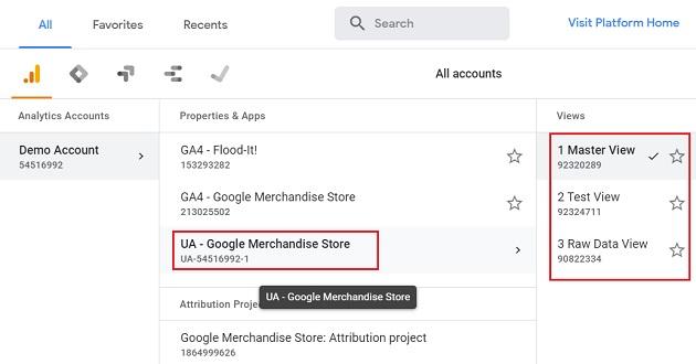 UA Google Merchandise Store reporting view