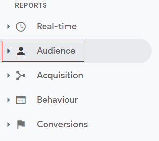 Audience Report