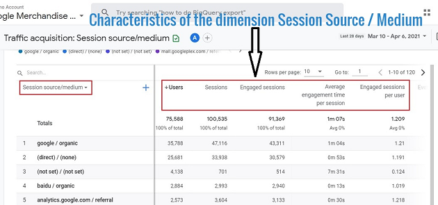 characteristics of the dimension called 'Session Source Medium