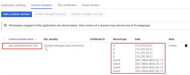 mapped custom domain records