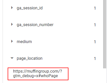 page location in debug view